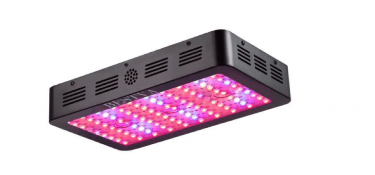 Bestva-LED-Grow-Light-Review-1000w-featured-Image